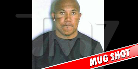 Hines Ward Arrested for Drunk Driving via TMZ
